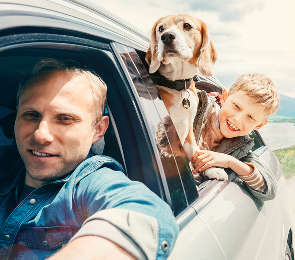 Family with a dog traveling by car